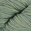 The Fibre Company Canopy Worsted 100g - Fern