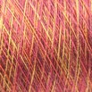 Valley Yarns Variegated 8/2 Tencel - 4959-02a
