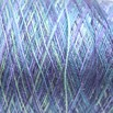 Valley Yarns Variegated 8/2 Tencel - 4961-02a