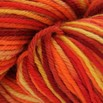 Cascade Yarns 220 Superwash Paints Discontinued Colors - 9919