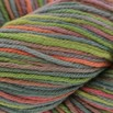 Cascade Yarns 220 Superwash Paints Discontinued Colors - 9979