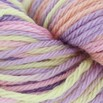 Cascade Yarns 220 Superwash Sport Multis - 109
