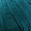 Cascade Yarns 220 Superwash - 1960