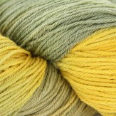Valley Yarns 40th Anniversary Huntington - hand dyed by Lorna's Laces