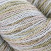 Classic Elite Yarns Alpaca Sox - 1801