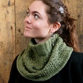 Classic Elite Yarns Woodland Turtle Cowl (Free)