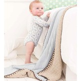 Debbie Bliss Reversible Blanket PDF