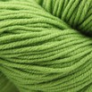 Plymouth Yarn Select DK Merino Superwash - 1123
