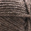 Plymouth Yarn Encore Chunky - 6001