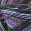 Regia 4-Ply Design Line Garden Effects by Kristin Nicholas - 3304