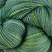 Cascade Yarns Heritage Paints - 9770