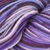 Cascade Yarns Heritage Paints - 9806