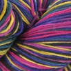 Cascade Yarns Heritage Paints - 9812