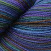 Cascade Yarns Heritage Paints - 9828