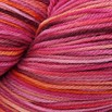 Cascade Yarns Heritage Paints - 9883
