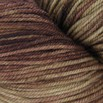 Dream in Color Kettle Dyed Smooshy - 04