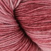 Dream in Color Kettle Dyed Smooshy - 36