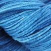 Dream in Color Kettle Dyed Smooshy - 42