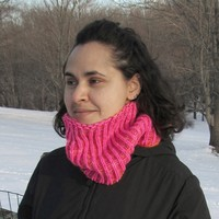 Electric Reversible Shaker Cowl (Free)