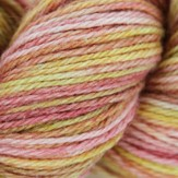 Manos del Uruguay Serena Space Dyed Discontinued Colors
