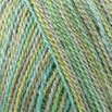 Classic Elite Yarns Silky Alpaca Lace Hand Paint - 2461