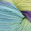 Lorna's Laces Solemate - 0914