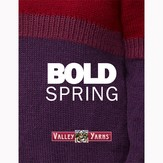 Valley Yarns Bold Spring eBook